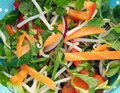 Stir Fry Royalty Free Stock Images - 26090779
