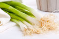 Spring Onions Royalty Free Stock Photos - 26091218