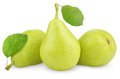 Green Yellow Pears With Leaves On White Royalty Free Stock Image - 26091296