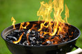 Grill Royalty Free Stock Images - 26100469
