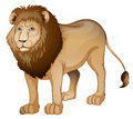 Lion Royalty Free Stock Images - 26112389