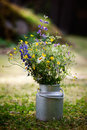 Bouquet Of Wild Flowers Stock Images - 26134414