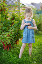 Adorable Little Girl With Red Currants Royalty Free Stock Photos - 26138938
