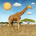 Giraffe  In Safari Field Recycled Paper Background Royalty Free Stock Photos - 26143318
