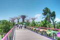 Gardens By The Bay, Singapore Stock Photo - 26144660