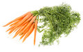 Bunch Of Carrots On White Stock Photography - 26213512
