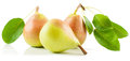 Pear Stock Images - 26234804