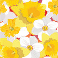 Seamless Pattern With Flowers Daffodils Royalty Free Stock Photo - 26240005