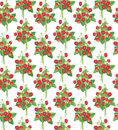 Strawberry  Seamless Pattern Stock Images - 26240254