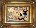 Vintage Things In Golden Frame Royalty Free Stock Photo - 26295985