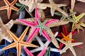 Sea Stars Royalty Free Stock Images - 26316529
