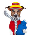 Winter Dog Scarf And Hat Stock Photos - 26339193