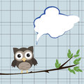 Owl With Speech Bubble Stock Image - 26354151