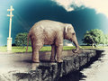 Elephant On The Road Stock Images - 26362724