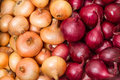 Background Of Yellow And Red Onions Royalty Free Stock Images - 26375609