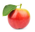 Single Summer Apple Stock Images - 26435974