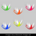 Cropped Six Colorful Waterlilly Blossom Set Royalty Free Stock Photos - 26445028