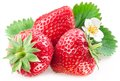 Appetizing Strawberry. Royalty Free Stock Photography - 26449157
