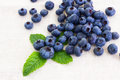 Fresh Bilberries With Mint Leaf Royalty Free Stock Image - 26462496