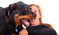 Woman With Her Dog Royalty Free Stock Photos - 26471928