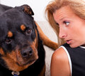 Talking To The Dog Stock Images - 26471934