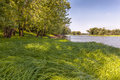 River Grass Royalty Free Stock Photography - 26471947