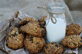Oatmeal Cookies And Bottle Of Milk On Canvas Royalty Free Stock Photography - 26527467