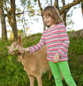 Little Girl With Goat Stock Image - 26542831