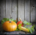 Autumn Pumpkins And Corn Royalty Free Stock Photography - 26544647