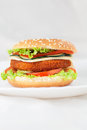 Fried Chicken Or Fish Burger Sandwich Stock Image - 26546761
