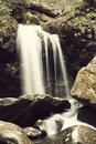 Falls In Great Smoky Mountains Royalty Free Stock Photo - 26548425
