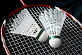 Badminton Equipment Royalty Free Stock Photo - 26607265