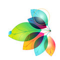 Colorful Autumn Leaves Illustration Stock Image - 26660151