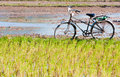 Lonely Bike Waiting Stock Images - 26662524