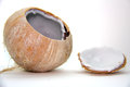 Young Coconut Stock Photo - 26668990