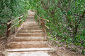 Stairs Up The Hill. Stock Photography - 26670012