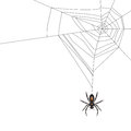 Spider Stock Images - 26672484