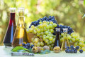 Grapes And Wine In The Bottles Stock Photography - 26691252