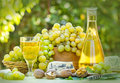Green-White Grapes And White Wine Stock Photos - 26691353