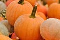 Pumpkins For Sale Stock Photography - 26696432