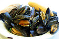 Steamed Mussels Royalty Free Stock Images - 2670149