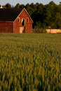 Old Red Country Barn Stock Photo - 2677920
