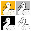 Duck Head Illustration Royalty Free Stock Photos - 26729658