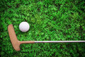 Putter And Golf Ball On Green Grass Stock Images - 26732824
