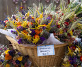 Fall Flowers Stock Images - 26808854