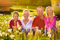 Happy Family Sitting In Summer Meadow Royalty Free Stock Photo - 26869095