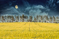 Mysterious Landscape – Field, Moon And Night Sky Royalty Free Stock Image - 26926206
