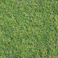 Texture And Surface Of Green Turf Royalty Free Stock Images - 26940029