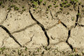 Land Parched Land Stock Images - 26972284