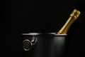 Champagne Bucket Royalty Free Stock Photo - 26983485